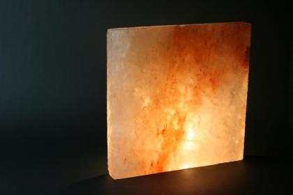 6 x Salziegel 20x 20 x 2,5 cm in Biova Premiumqualität