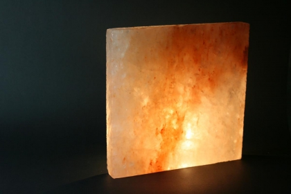 Salzziegel Format: 20x20x2,5cm Gewicht per Stück: 2,25kg